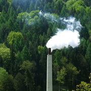 Photo: Smoking chimney of factory, in the background forest