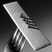 Photo: Chewing gum on a fork