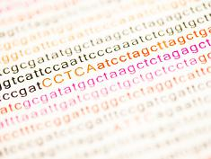 Photo: Genetic sequence