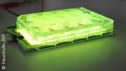 Image: Green OLED light during physical stimulation of cells (OLED and cell culture plate); Copyright: Fraunhofer FEP