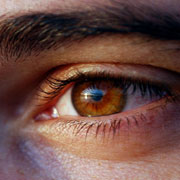 Photo: Brown male eye