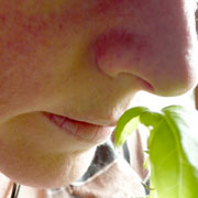 Photo: Nose sniffing a plant
