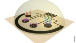 Image: depiction of sensor for COVID-19; Copyright: Caltech
