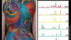 Image: tattoo ink color palette; Copyright: Zavaleta Lab at USC