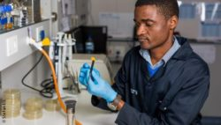 Image: A researcher from South Afrika in his laboratory; Copyright: Stefan Els